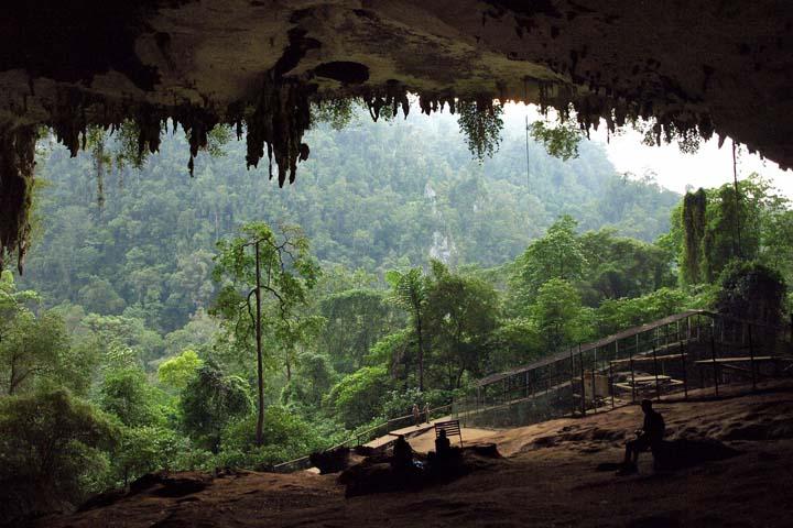 پارک ملی نیاه مالزی
